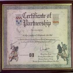 HP Business Partner Award